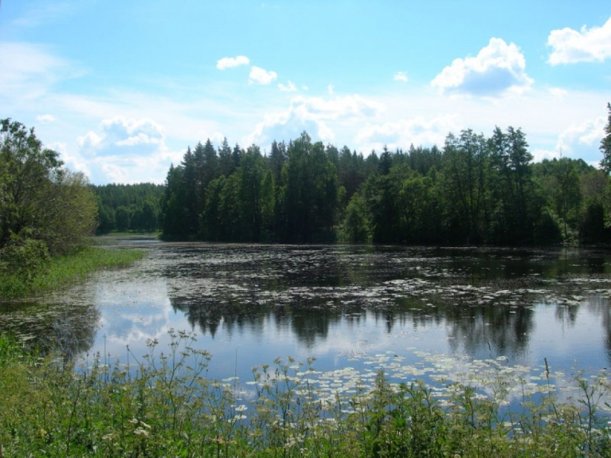 A lake in Latgale [Image: bestriga.com]