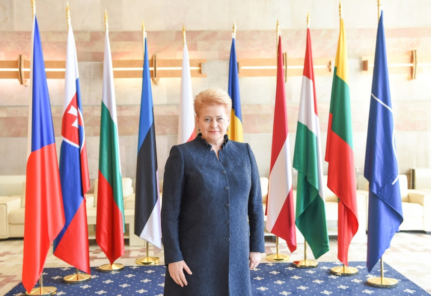 Grybauskaite is currently at the Central European Summit in Bucharest [Image: LRP.lt]