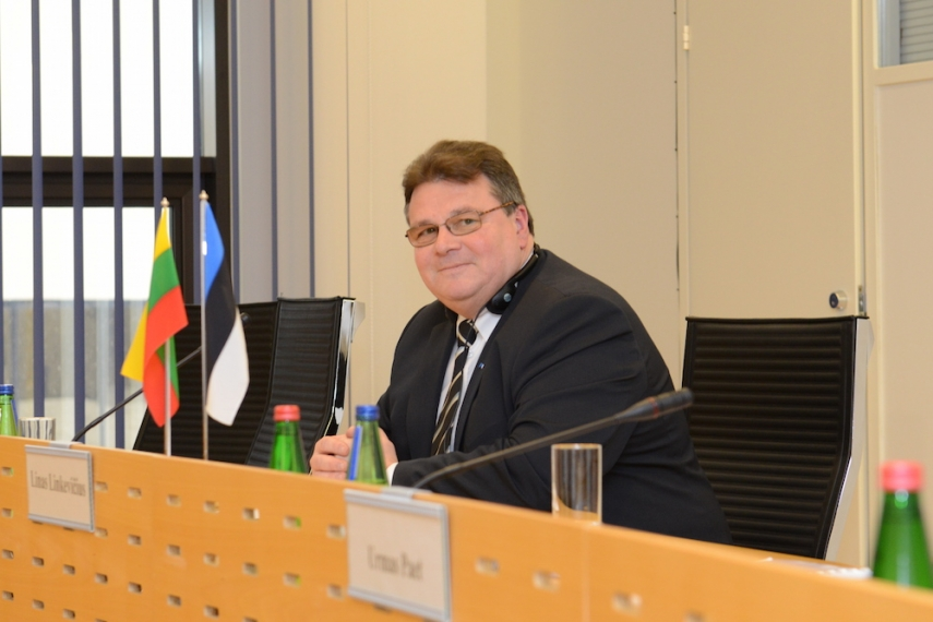 Lithuanian Foreign Minister Linas Linkevicius [Image: Wiki Commons]