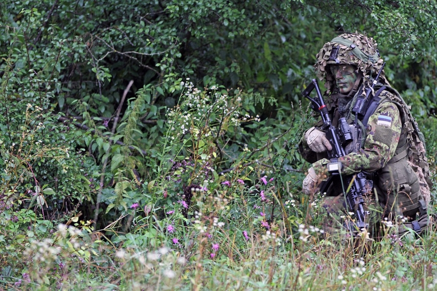Estonian govt announces snap exercise for over 800 reservists