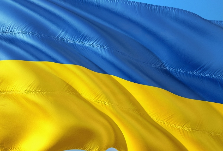 Ukraine's Deputy PM Kuleba grateful to EU for aid provided since 2014