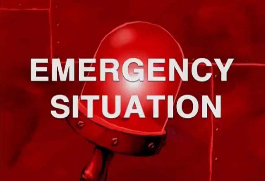 Estonian govt declares emergency situation until May 1