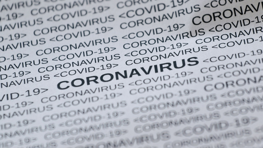 Foreign ministers of Baltic Sea states discuss coronavirus crisis