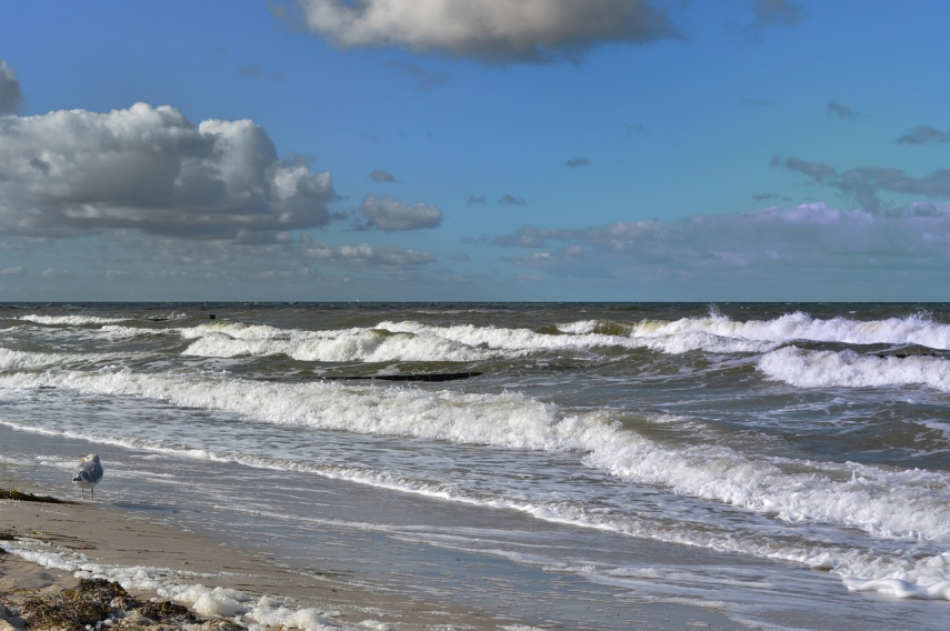 Pollutants in Baltic Sea deemed non-hazardous - Lithuanian environmental authority