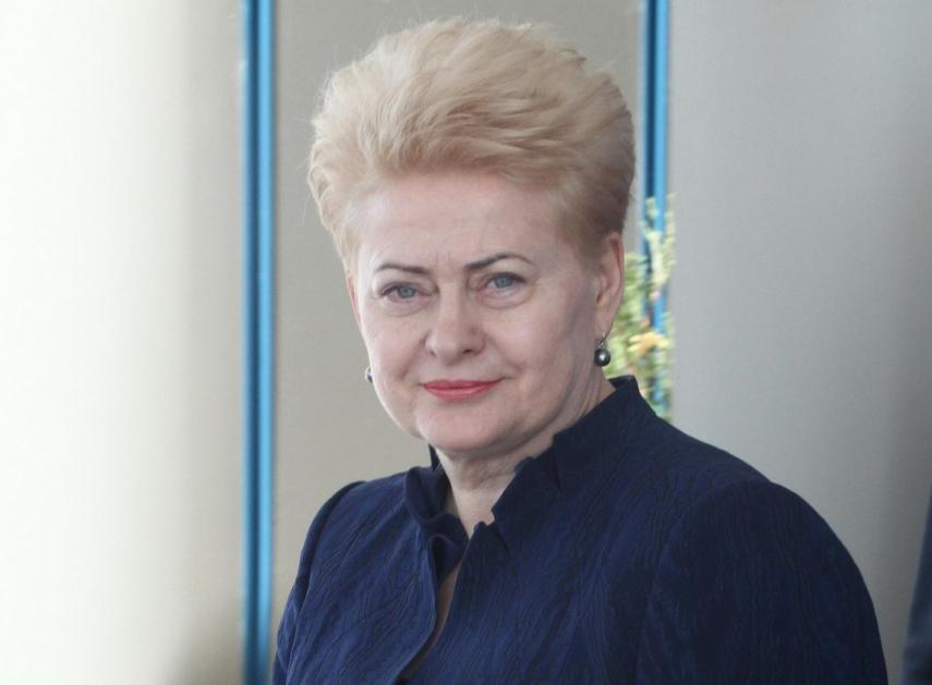 Ex-Lithuanian leader calls for urgent construction of barrier on Belarusian border