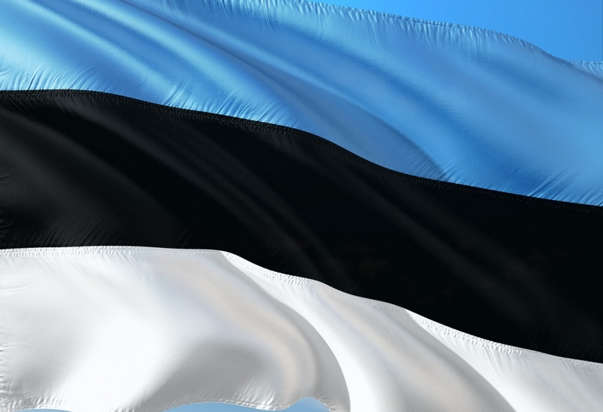 New president: Preamble of Constitution contains genetic code of Estonian state